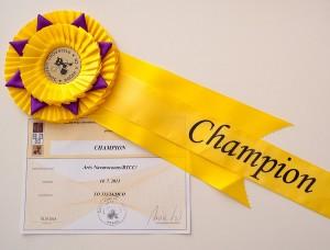 Arès Navarocoons - diploma a kokarda Champion