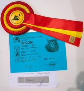Arès Navarocoons - diploma a kokarda