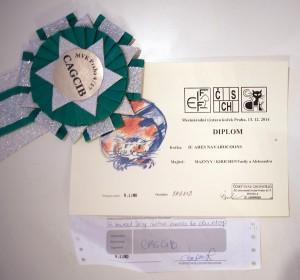 Arès Navarocoons - diploma a kokarda CAGCIB