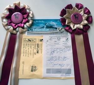 Arès Navarocoons - diploma a kokarda CACS