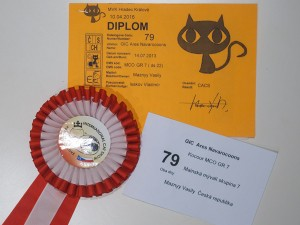 Arès Navarocoons - diploma a kokarda CACS, vystava Hradec Kralove 2016